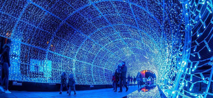 Tunnel van lichtjes in Norwich waar mensen doorheen wandelen