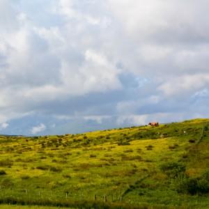 Het uitzicht vanaf de camping op Skye.