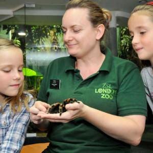 London Zoo Bed Bugs logeren – Foto: London Zoo