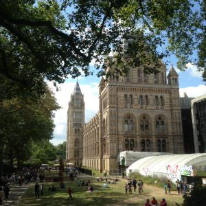 natural-history-museum-Londen