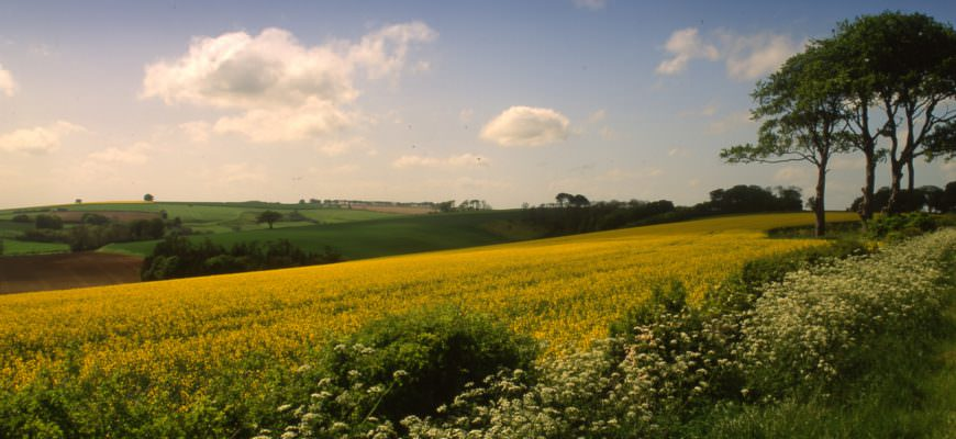 Britain's Areas of Outstanding Natural Beauty