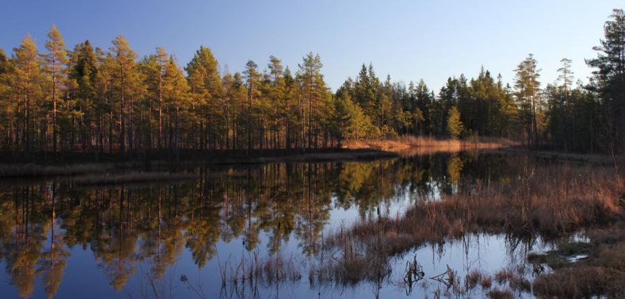 Zweden in de herfst