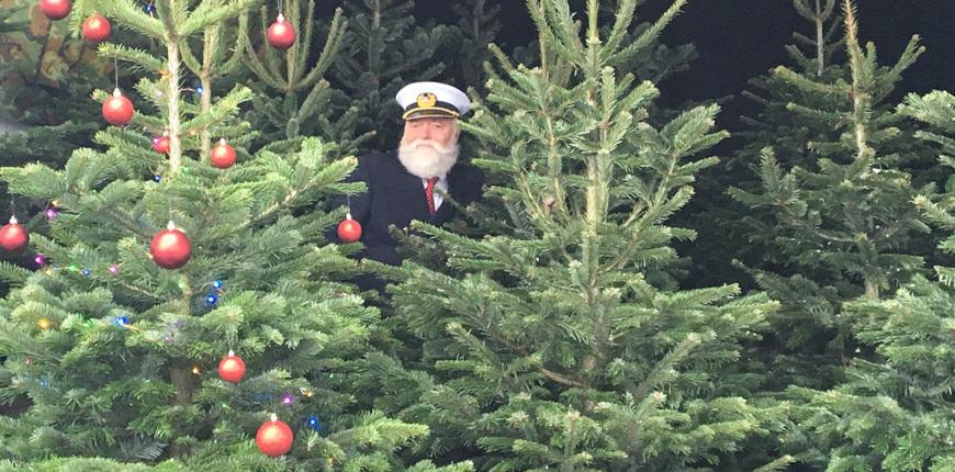 Kapitein Kenneth kerstbomen