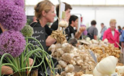 Food festivals Engeland - Garlic Festival