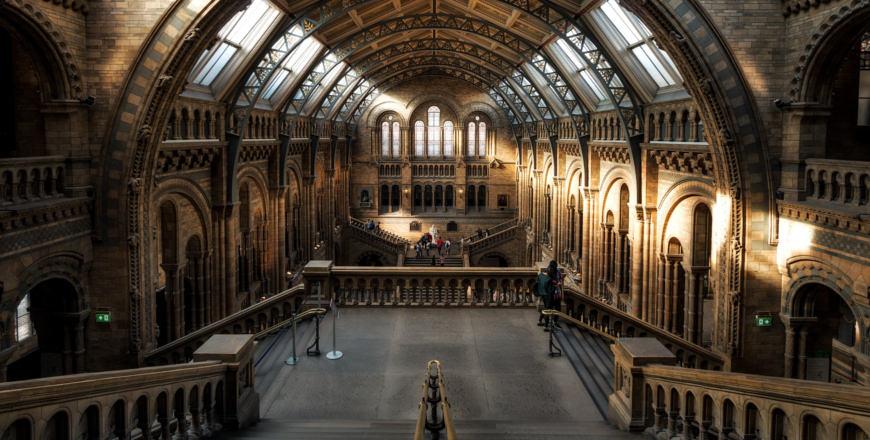 Natural History Museum / Natuurhistorisch Musem Londen