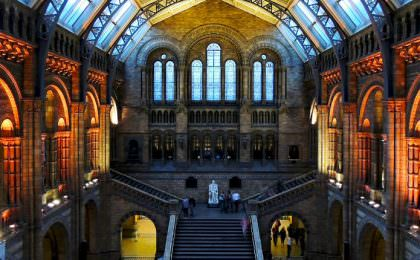Museumnacht Engeland in het Natural History Museum