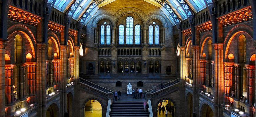 Museumnacht Engeland in het Natural History Museum