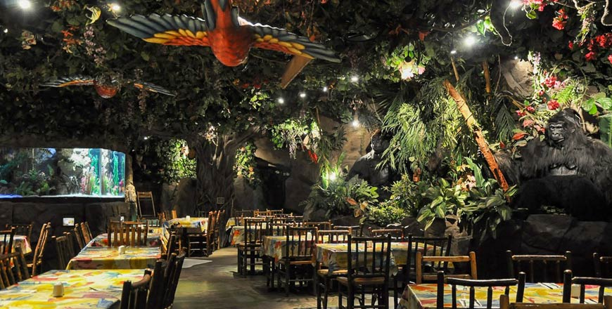 Rainforest Cafe Londen - Beste familierestaurant
