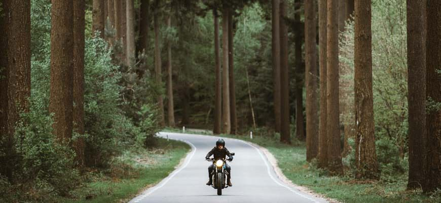 Motorrijder op weg in bos over motorroute